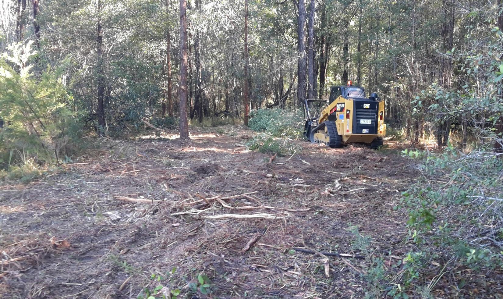 Bobcat tree shredder