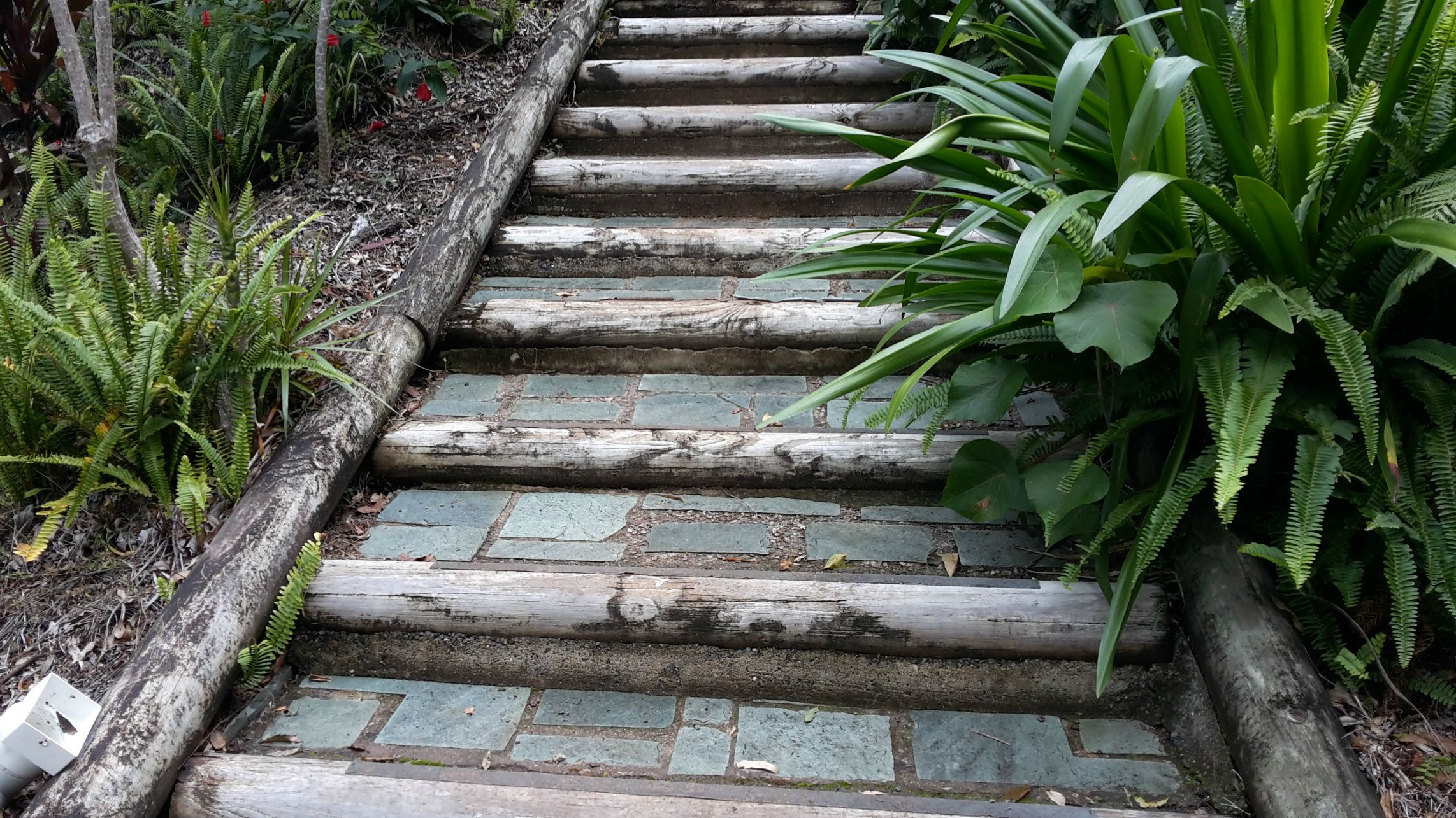 Our original log and slate steps-they looked ok but were very difficult to walk on